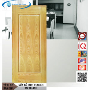 Cửa gỗ HDF Veneer TS 1B Ash